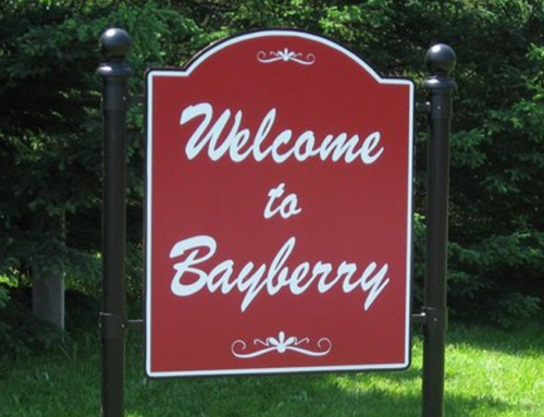 Have Your Say: Stop signs on Blackberry at Cherry Tree