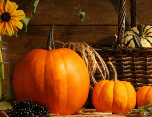 EVENT: Halloween Party at the Plaza set for Oct. 28